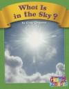 What Is in the Sky? - Cindy Chapman