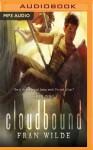 Cloudbound - Fran Wilde, Raviv Ullman