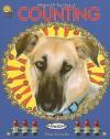 Bellaboo & B-Bug's Book of Counting - Tiffany Ann Laufer