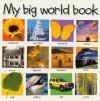My Big World Book - Roger Priddy