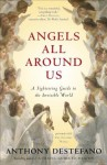 Angels All Around Us: A Sightseeing Guide to the Invisible World - Anthony DeStefano
