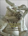 Ambitious Form: Giambologna, Ammanati, and Danti in Florence - Michael Cole