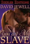 You Are My Slave - DAVID JEWELL
