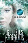 Geležies karalius - Julie Kagawa, Marius Balandis