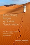 Encountering Images of Spiritual Transformation: The Thoroughfare Motif Within the Plot of Luke-Acts - James M Morgan, Steve Walton