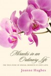 Miracles in an Ordinary Life - Joanne Hughes
