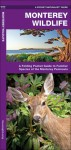 Monterey Wildlife: A Folding Pocket Guide to Familiar Species of the Monterey Peninsula - James Kavanagh, Raymond Leung