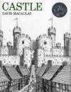 Castle - David MacAuley