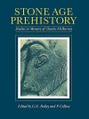 Stone Age Prehistory: Studies in Memory of Charles McBurney - G. N. Bailey, P. Callow