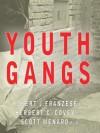 Youth Gangs - Robert J. Franzese, Herbert C. Covey, Scott Menard