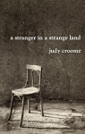 a stranger in a strange land - Judy Croome