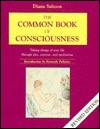 Common Book of Consciousness - Diana Saltoon