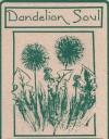 Dandelion Soul - Terry Persun, Carolyn Page, Roy Zarucchi