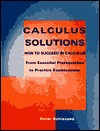 Calculus Solutions: How to Succeed in Calculus from Essential Prerequisites to Practice Examinations - Peter Schiavone
