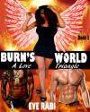 Burn's World #3 - Eve Rabi