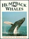Humpback Whale - Francois Gohier, Vicki León