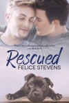 Rescued (Rescued Hearts #1) - Felice Stevens
