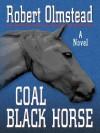 Coal Black Horse - Robert Olmstead
