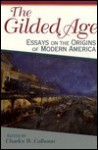The Gilded Age: Essays on the Origins of Modern America - Charles W. Calhoun