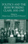 Politics and the Irish Working Class, 1830-1945 - Donal Ó Drisceoil