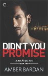Didn't You Promise (A Bad for You Novel) - Amber A. Bardan