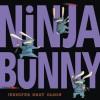 Ninja Bunny - Jennifer Gray Olson