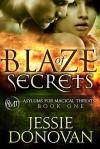 Blaze of Secrets - Jessie Donovan