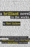 A Brilliant Novel in the Works - Yuvi Zalkow