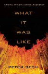 What It Was Like - Peter Seth