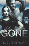 Too Far Gone (Adirondack Pack) (Volume 1) - K.C. Stewart
