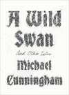 A Wild Swan: And Other Tales - Michael Cunningham