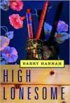 High Lonesome - Barry Hannah