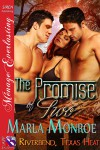 The Promise of Two - Marla Monroe