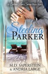 Steeling Parker (a Taboo Love Series) - Andria Large, M.D. Saperstein