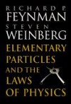 Elementary Particles and the Laws of Physics: The 1986 Dirac Memorial Lectures - Richard P. Feynman;Steven Weinberg