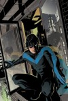 The Lost Year (Nightwing) - Marv Wolfman;Marc Andreyko