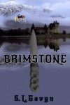 Brimstone (Book 1) - S. L. Gavyn