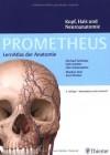 PROMETHEUS LernAtlas der Anatomie: Kopf, Hals und Neuroanatomie - Michael Schünke, Erik Schulte, Udo Schumacher, Markus Voll, Karl Wesker