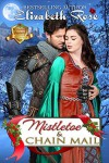Mistletoe and Chain Mail - Elizabeth Rose