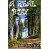 A Real Boy - J.L. Merrow