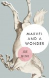Marvel and a Wonder - Joe Meno
