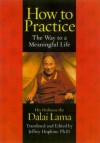 How to Practice: The Way to a Meaningful Life - Dalai Lama XIV