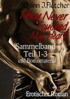 They Never Touched My Heart Sammelband Teil 1-3 inkl. Bonusmaterial - Quinn J. Fletcher