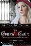 The Countess' Captive - Andrea Cefalo