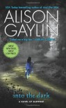 Into the Dark - Alison Gaylin