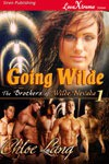 Going Wilde (The Brothers of Wilde, Nevada #1) - Chloe Lang