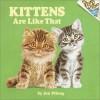Kittens Are Like That! (Pictureback(R)) - Jan Pfloog