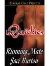 Running Mate (Devlin Dynasty, Book One) - Jaci Burton
