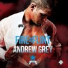 Fire and Flint - Andrew  Grey, Greg Tremblay