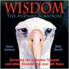 Wisdom, The Midway Albatross - Darcy Pattison,  Kitty Harvill (Illustrator)